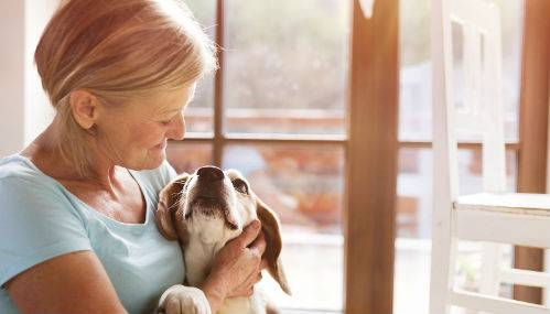 Pet Friendly Nursing Homes and Assisted Living Facilities