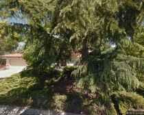 Casa Pastel Care Home - Mountain View, CA