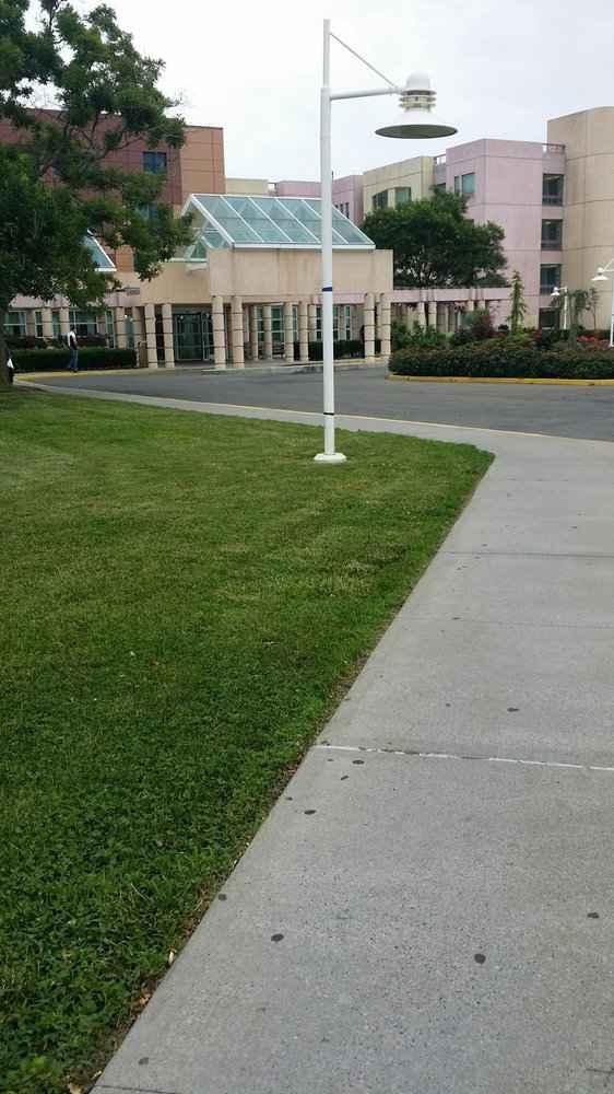 Peachy Palm Gardens Nursing Home Orlando Fl | Home Design Plan