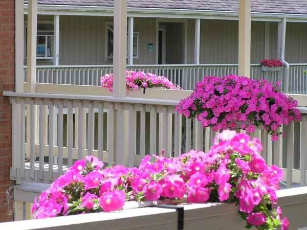 Meadowood Senior Living in Worcester, PA