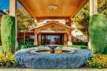 Springfield Place - Petaluma, CA