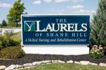 Laurels of Shane Hill