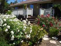 Valle Del Sol Care - Bonsall, CA