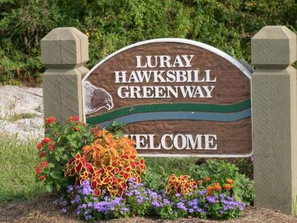 Luray Hawksbill Greenway in Luray, VA
