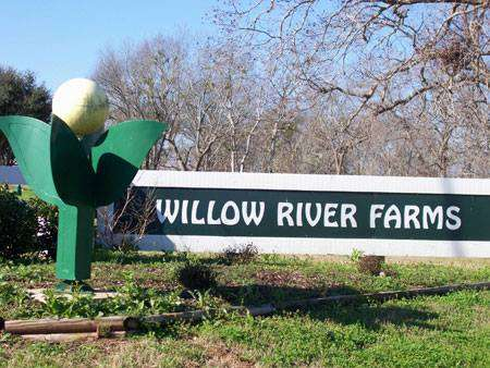 Willow River Farms - Brookshire, TX